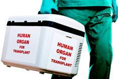 organ-transportation